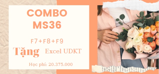 Combo 14 – 3F ACCA Online F7-F8-F9-ExcelUDKT (MS36)